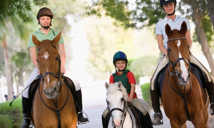 RidgeMar Equestrian Center - North County : One or Three 45-Minute Adult-and-Child Horseback-Riding Lessons at RidgeMar Equestrian Center (Up to 67% Off)