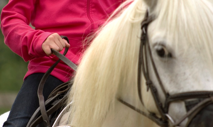 Graham Equestrian Center - Carney: $10 for Two Tickets to Day of The Horse at The Graham Equestrian Center on Saturday, October 4 ($20 Value)