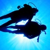Up to 39% Off Scuba-Diving Courses