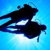 Corso di sub e immersioni in mare