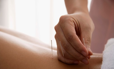 Acupuncture Assessment w/ One or Three Sessions at Quiet Island Chronic Pain Therapeutic Services (Up to 55% Off)