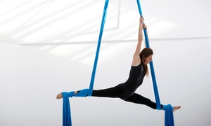 The Aerial Studio: 1-Month Pass to Adult Classes or Aerial Yoga or One Drop-In Kids' Class from The Aerial Studio (Up to 71% Off)