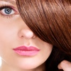 Up to 52% Off Haircut. Highlights, and Color