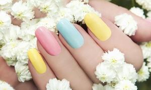 Clivia-A: 3 o 5 manicure estetiche con applicazione di smalto classico o semipermanente da Clivia-A (sconto fino a 82%)