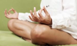 The Healing Garden: 4- or 12-Week Wellness Class at The Healing Garden (Up to 51% Off)