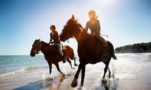 Laura Ranch: Passeggiata a cavallo con aperitivo per una, 2 o 4 persone al Laura Ranch (sconto fino a 83%)