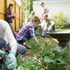 eKurs: Ogrodnictwo i projektowanie ogrodu z cert.