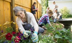 Kar-Group: Kurs online z certyfikatami: ogrodniczy lub projektowania ogrodów za 59 zł i więcej opcji w Kar-Group