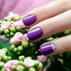 Shellac Manicure or Pedicure