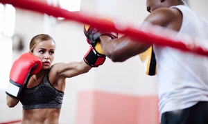 Up to 71% Off Adult MMA Classes at TNT Martial Arts & Fitness at TNT Martial Arts & Fitness, plus 6.0% Cash Back from Ebates.