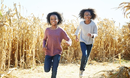 Single-Day Admissions for Two or Four at Farmer's Corn Maze, Valid 09/29/18–10/3/18 (Up to 53% Off)