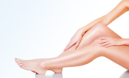 image for 1 Year of Unlimited Laser <strong>Hair Removal</strong> on One Small, Medium, or Large Area at Palace Laser & Spa (Up to 90% Off)