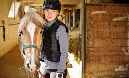 30-Minute Introductory Horse Riding Lesson for One or Two at Buttercup Stables and Trekking (Up to 50% Off)