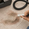 47% Off Rug and Carpet Cleaning