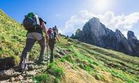 Podaruj Podróż | Groupon