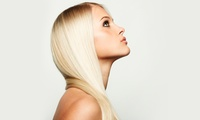 Wash, Cut, Blow-Dry and Conditioning Treatment with Optional Full Colour at Elysees Hair & Nail Salon (41% Off)