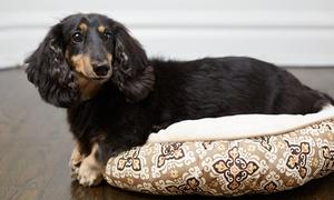 +Cota´s: Desde $135 por 1, 2 o 4 baños + corte de pelo canino + cepillado y peinado + limpieza de oídos + golosina en +Cotas