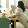 Pet Nutrition Online Course