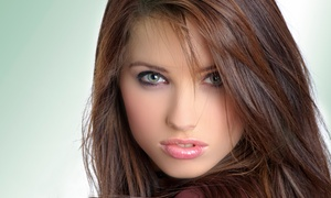 Cindy's Beauty Salon: Women's or Men's Haircut or Haircut with Highlights or Root Touchup at Cindy's Beauty Salon (Up to 58% Off)