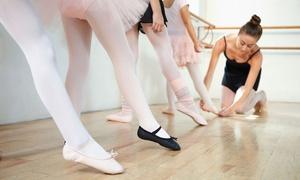 Le Petit Ballet De Silly: Stage de dance pour enfant au Petit Ballet de Silly