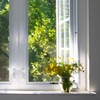 Up to 52% Off Window Cleaning from Mayers Window Cleaning