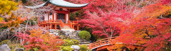 ✈ 10-Day Japan and China Tour w/ Air from Affordable World Tours