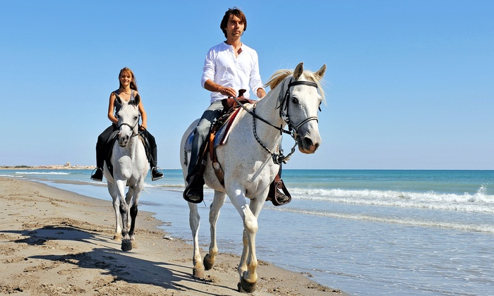 Happy Trails Walking Horses, LLC - Peters Point Beachfront Park: Guided, 60-Minute Ride on the Beach for Two, Four, or Six from Happy Trails Walking Horses, LLC (Up to 53% Off)