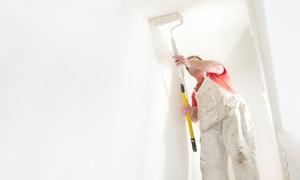 Domu Mea: Imbiancatura fino a 150 m² , soffitti inclusi con Domu Mea (sconto fino a 81%)