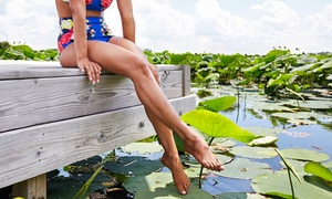 Club Soleil Tanning Company: Tanning Services at Club Soleil Tanning Company (Up to 67% Off). Five Options Available.