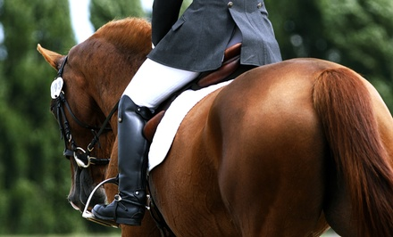 Two or Three One-Hour Private Horseback-Riding Lessons at GS Performance Horses (Up to 54% Off)