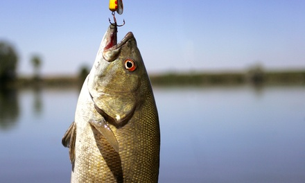 Four- or Eight-Hour Guided Fishing Tour with Snacks or Lunch from Chattanooga Big Bass (Up to 51% Off)