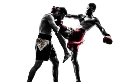 10 or 20 Mixed Martial Arts Lessons at The Pit Austin (Up to 80% Off)