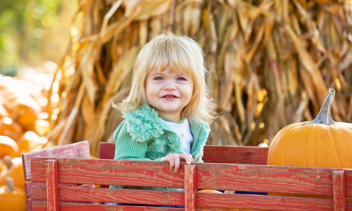 Red Wagon Farm - Columbia Station: Admission to the Annual Pumpkin Festival and Fun Activities for Two or Four at Red Wagon Farm (Up to 50% Off)