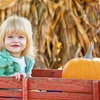 Up to 75% Off Unlimited Pumpkin-Patch Rides