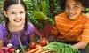 Free Kids' Event:Help Plant The Presidio