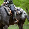 Up to 46% Off Horseback Trail Ride