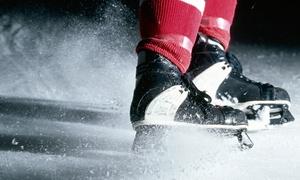 NCAA Men's Hockey via FanXchange: NCAA Hockey Tickets
