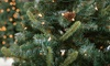 50% Off Holiday Trees, Wreaths, or Garlands
