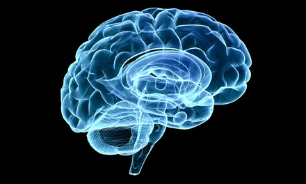 $65 for One-Hour Brain-Mapping Session from Gamma Jam Brain Works ($500 Value)