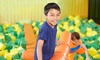 Chelsea Playground - Staten Island: Three or Five Passes, or $50 Toward a Birthday Party at Chelsea Playground (Up to 48% Off)