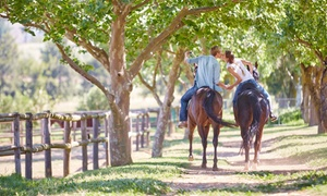 Equine Sport Centre: Two-Hour Horseback Trail Experience with Cheese Platter & Wine from R599 for Two at Equine Sport Centre (Up to 53% Off)