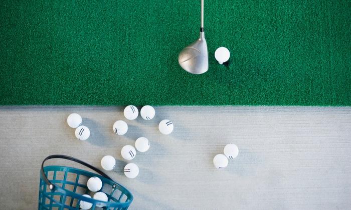Wheatley Golf Club - Doncaster: An Indoor Digital Golf Lesson with a PGA Coach and an Optional Follow-Up at Wheatley Golf Club