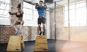 Flex 365: Two or Four 60-Minute Personal-Training Sessions for One or Two at Flex 365 (Up to 82% Off)