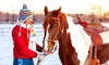 The Ohio Equine Team - Muirfield Village: Two, Four, or Eight Private Horseback Riding Lessons at The Ohio Equine Team (Up to 56% Off)