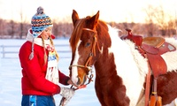 One-Hour Winter Horse Riding Trek with Pembrey Park Riding Centre (36% Off)