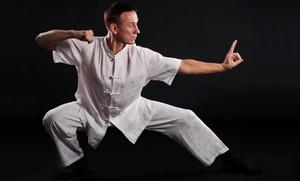 3, 6 o 12 meses de clases de artes marciales a elegir desde 49,95 €