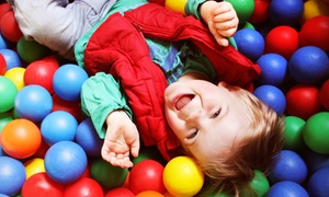 Hay Brothers Bounce City: Three-Hour Birthday Party or Five Bounce-House Sessions at Hay Brothers' Bounce City (Up to 54% Off)