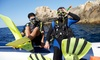 Phoenix Scuba - North Mountain: Kids Seal Team PADI Program or Adult Open-Water PADI Certification Course at Phoenix Scuba (Up to 52% Off)