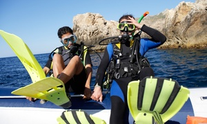 Up to 43% Off Open-Water Certification at International Scuba