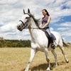 Up to 46% Off Horseback Riding